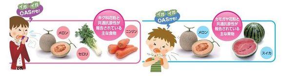 口腔アレルギー症候群を起こす食品